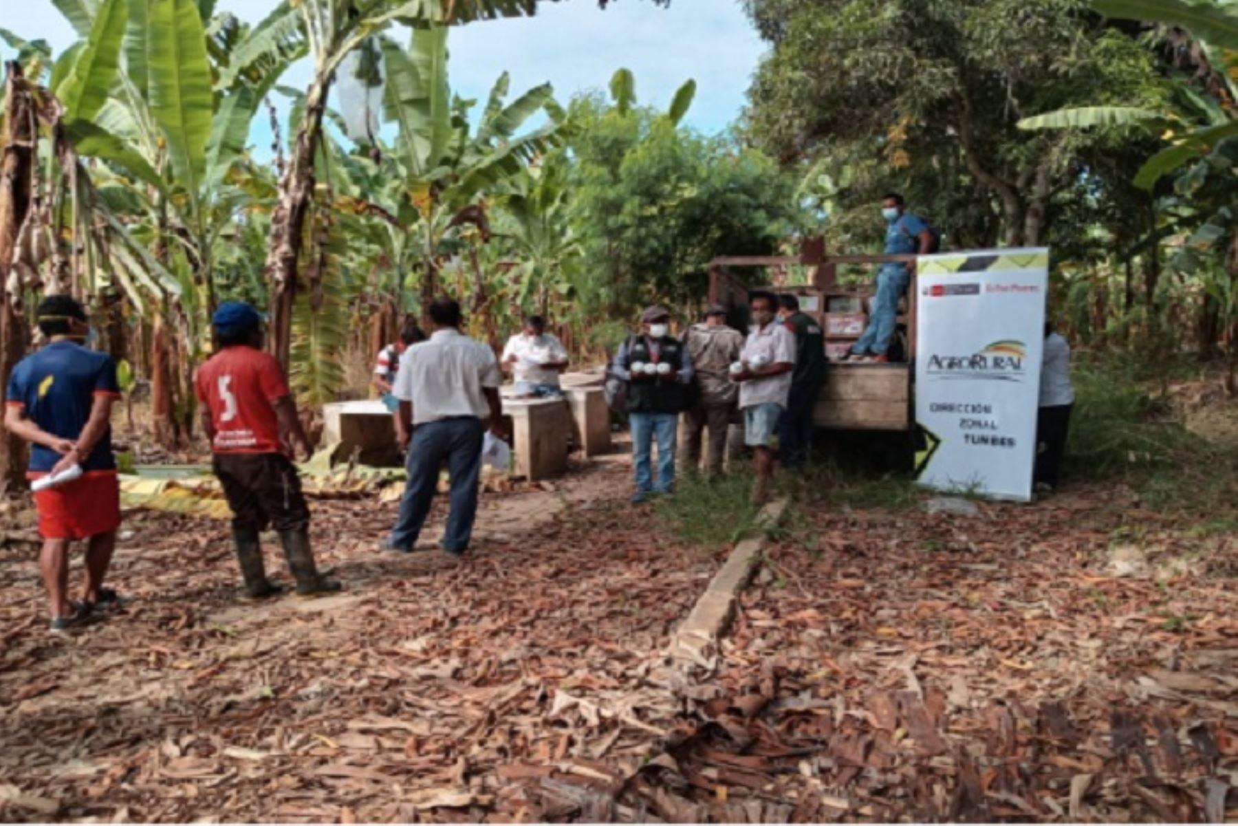 La entrega de abono foliar a pequeños productores registra un 85 % de avance, informó Agro Rural.