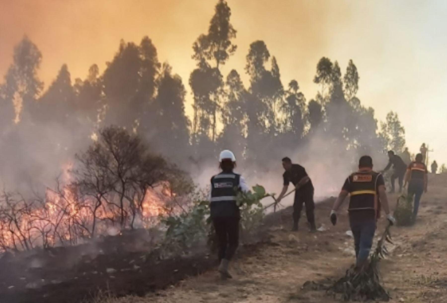 Los incendios forestales provocan la pérdida de nuestros bosques y de diferentes tipos de vegetación, así como la muerte de animales domésticos y silvestres. En el 98 % de los casos son ocasionados por el ser humano, luego de quemar los rastrojos o restos de sus cosechas y perder el control del fuego.