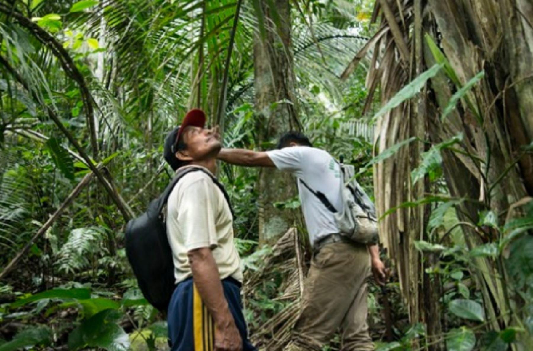 Minam aprueba protocolo para la protección de los defensores ambientales