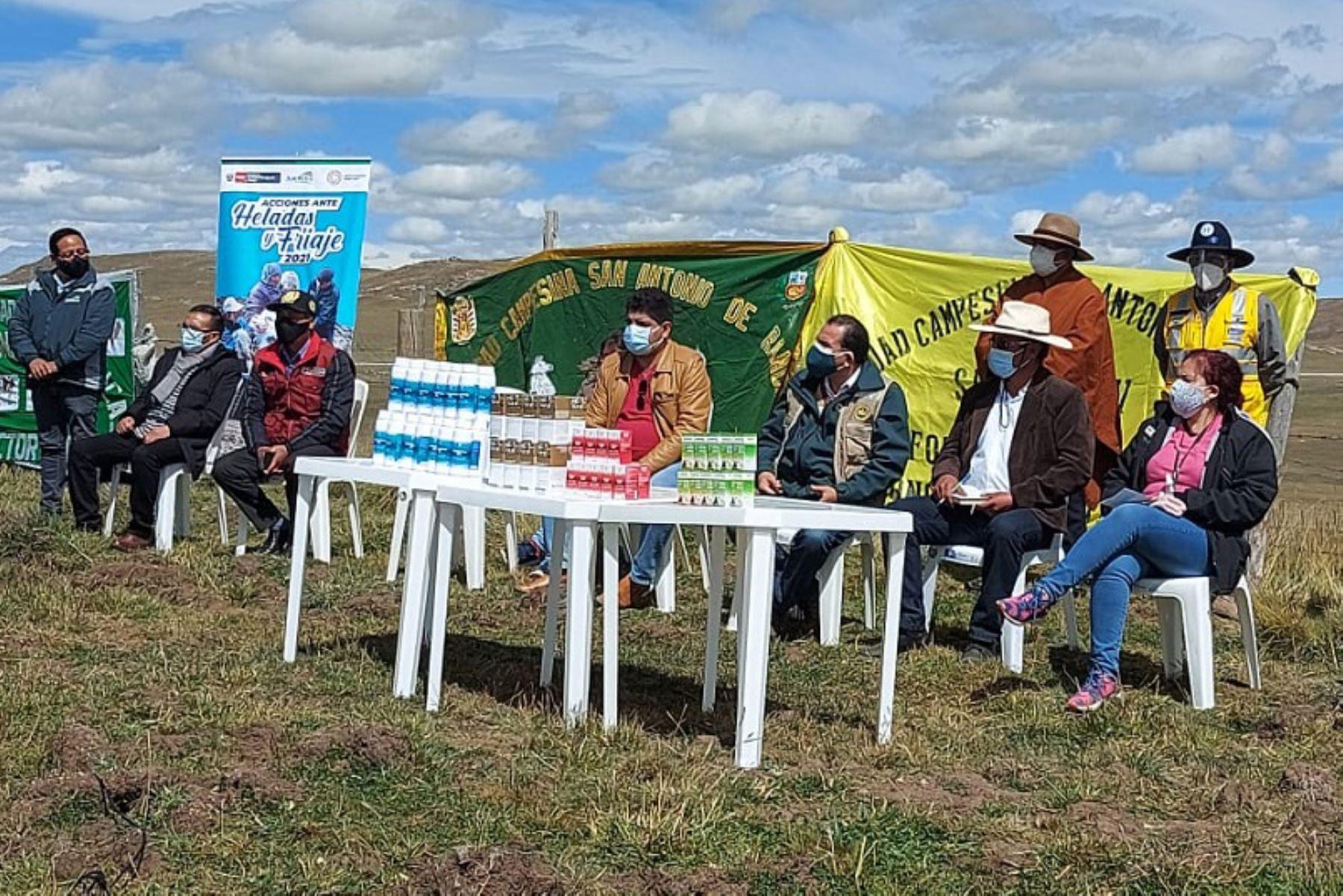 Se ha destinado alrededor de S/ 3.2 millones para la intervención en las provincias de Daniel Alcides Carrión y Pasco. Foto: ANDINA/Agro Rural