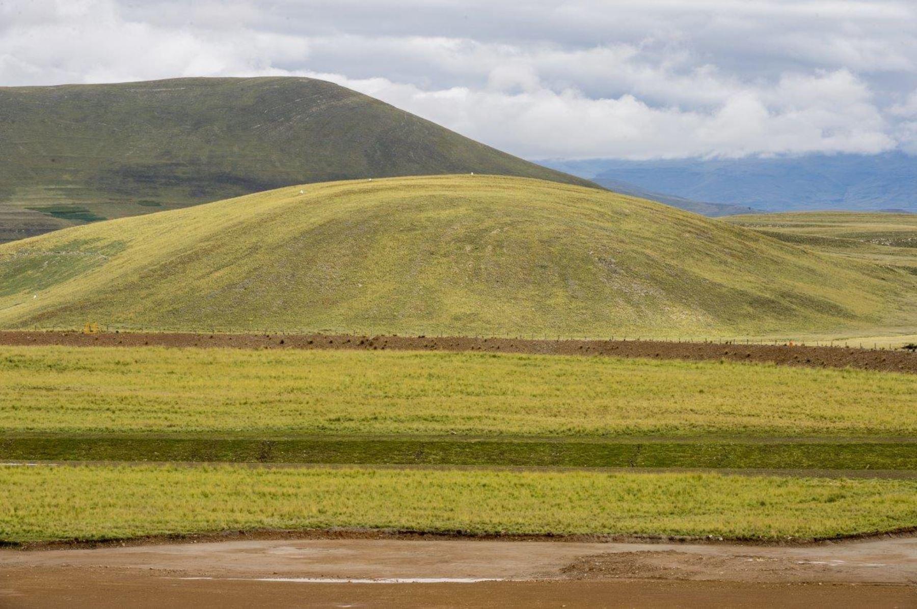 Cusco: logran rehabilitar tierras disturbadas por actividades mineras en Tintaya