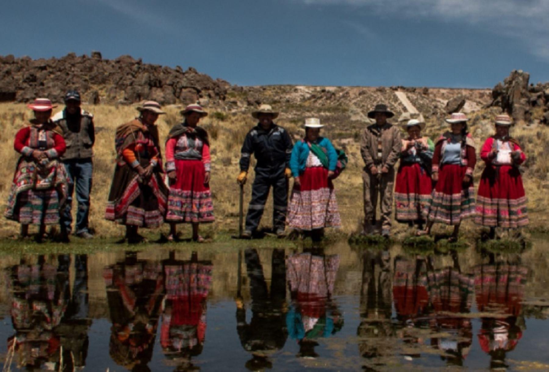 Comunidades de Caylloma, en la región Arequipa, empezaron un proceso de restauración ecológica, que ha permitido recuperar 10,000 hectáreas de pastos con los cuales alimentan a sus camélidos. Foto Giulianna Camarena / PNUD Perú