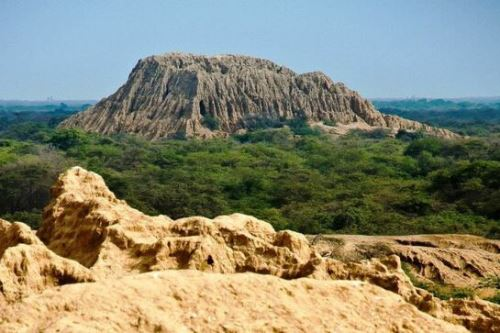 Vista del Santuario Histórico Bosque de Pómac en la región Lambayeque. ANDINA/Difusión