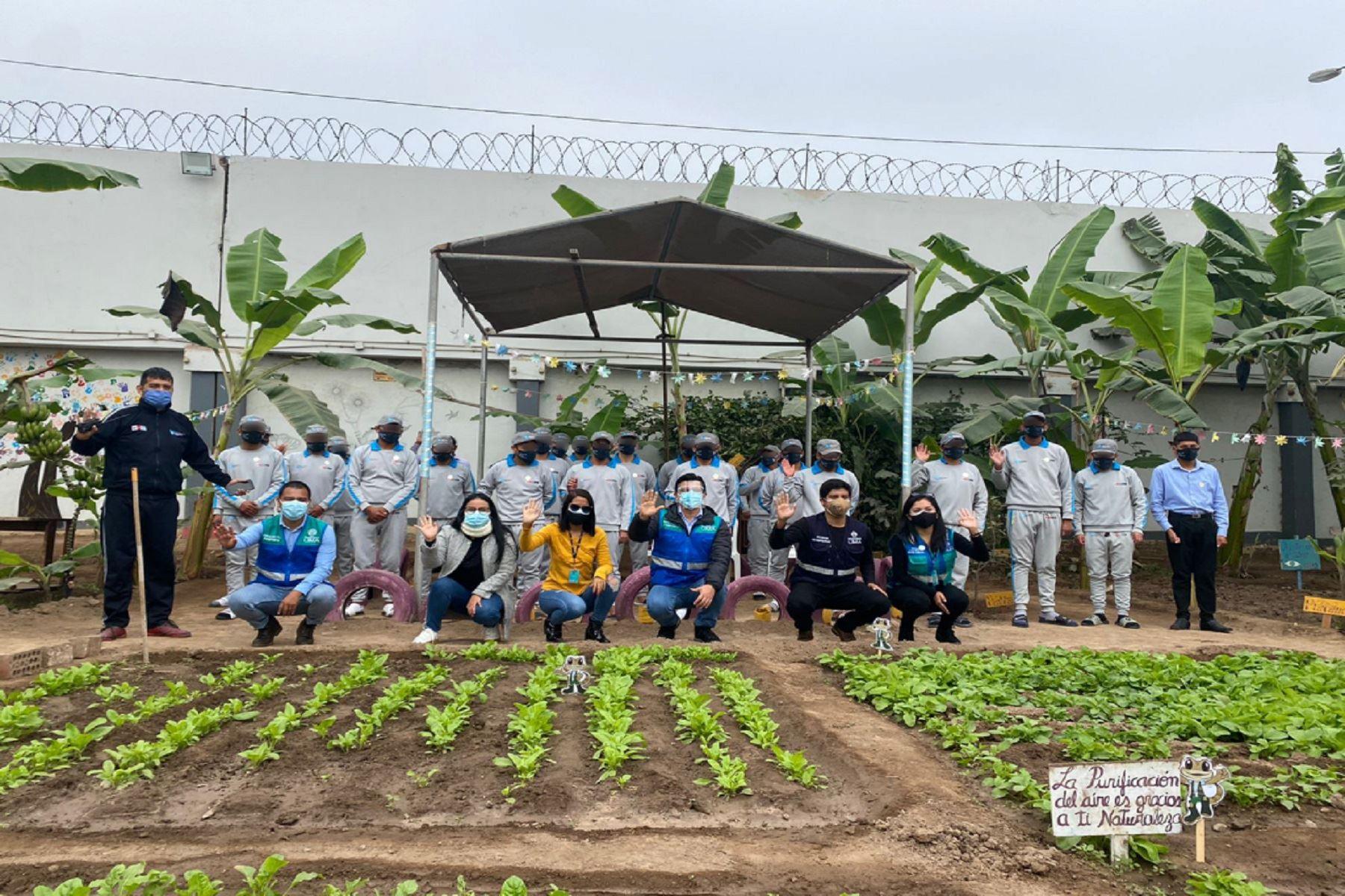 Jóvenes del centro Maranguita implementaron jardín educativo Makaspa Maravillata . Foto: difusión.