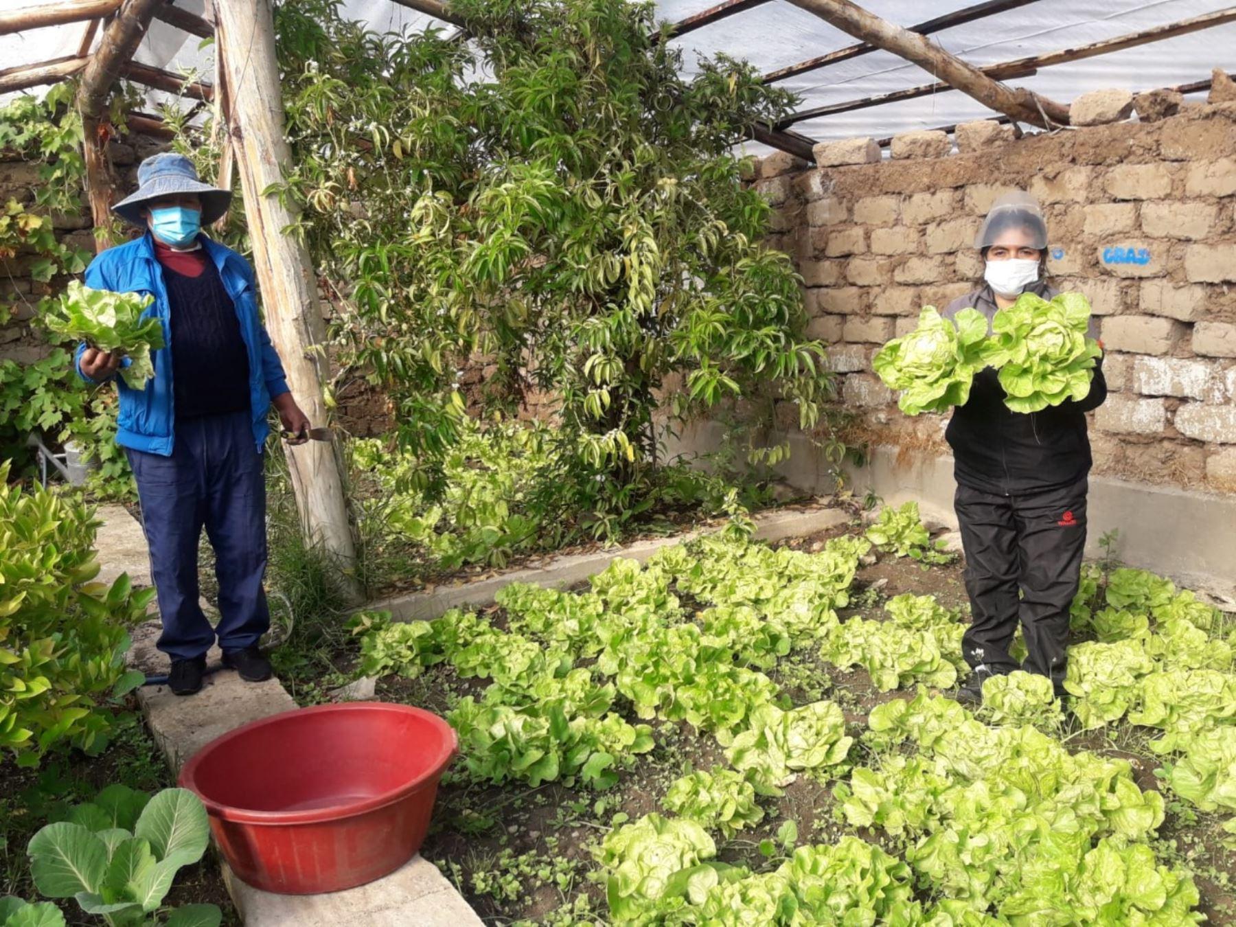 Junín: madres reciben productos alimenticios de Qali Warma y hortalizas de huerto escolar