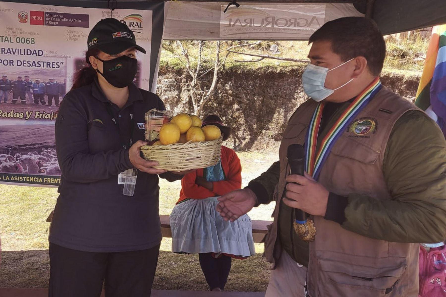 Productores agropecuarios de la Comunidad Campesina de Huambomayo, distrito Chinchaypucyo en Anta región Cusco, recibieron la visita de Roxana Orrego, directora ejecutiva de AgroRural, quien llegó hasta el lugar para supervisar las acciones ante heladas y friaje en esta región.  Foto: ANDINA/AgroRural