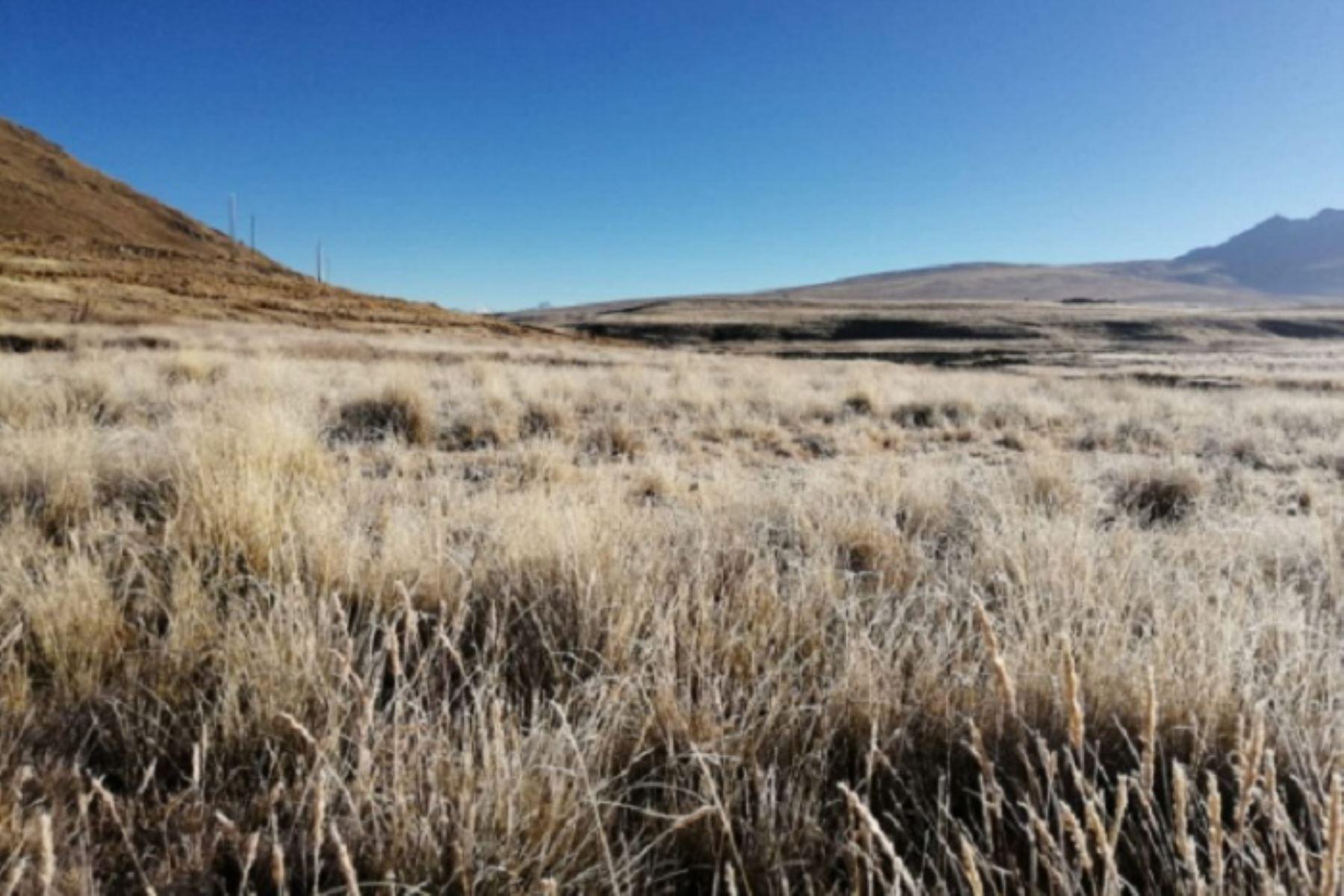 El COER Áncash refirió que hasta el momento la temporada de heladas no ha provocado infecciones respiratorias agudas en la población de la zona.