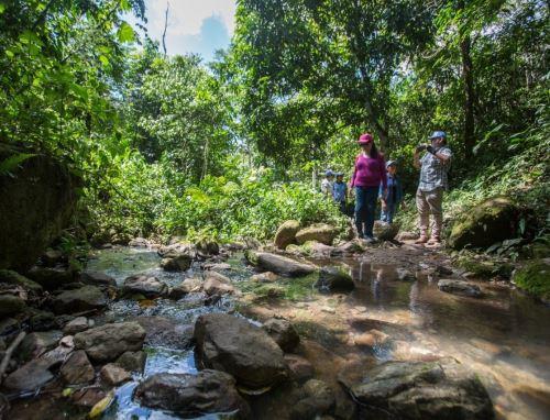 San Martín apuesta por la recuperación de bosques para proteger sus fuentes de agua. La EPS Moyobamba realizó un estudio técnico que propone ejecutar varias iniciativas de servicios ecosistémicos.