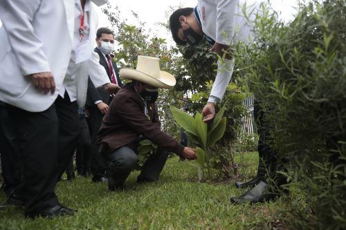 Pedro Castillo se reúne con integrantes del Colegio Químico Farmacéutico del Perú