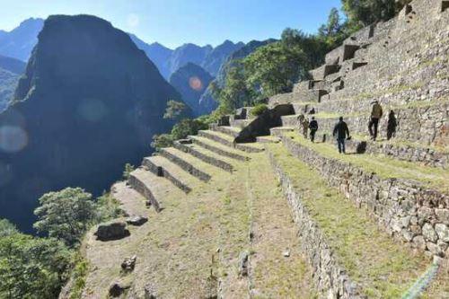 Para la recuperación de los andenes y camino prehispánico se contrató principalmente mano de obra local. Foto: ANDINA/Mincul