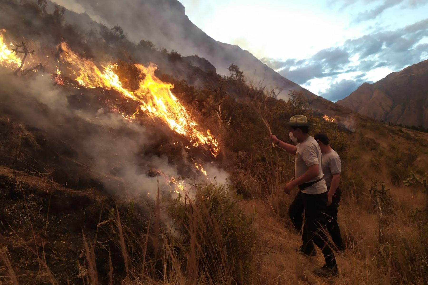 Incendio forestal en Pisac habría sido originado por un ciudadano argentino durante un pago a la tierra. Foto: ANDINA/difusión.