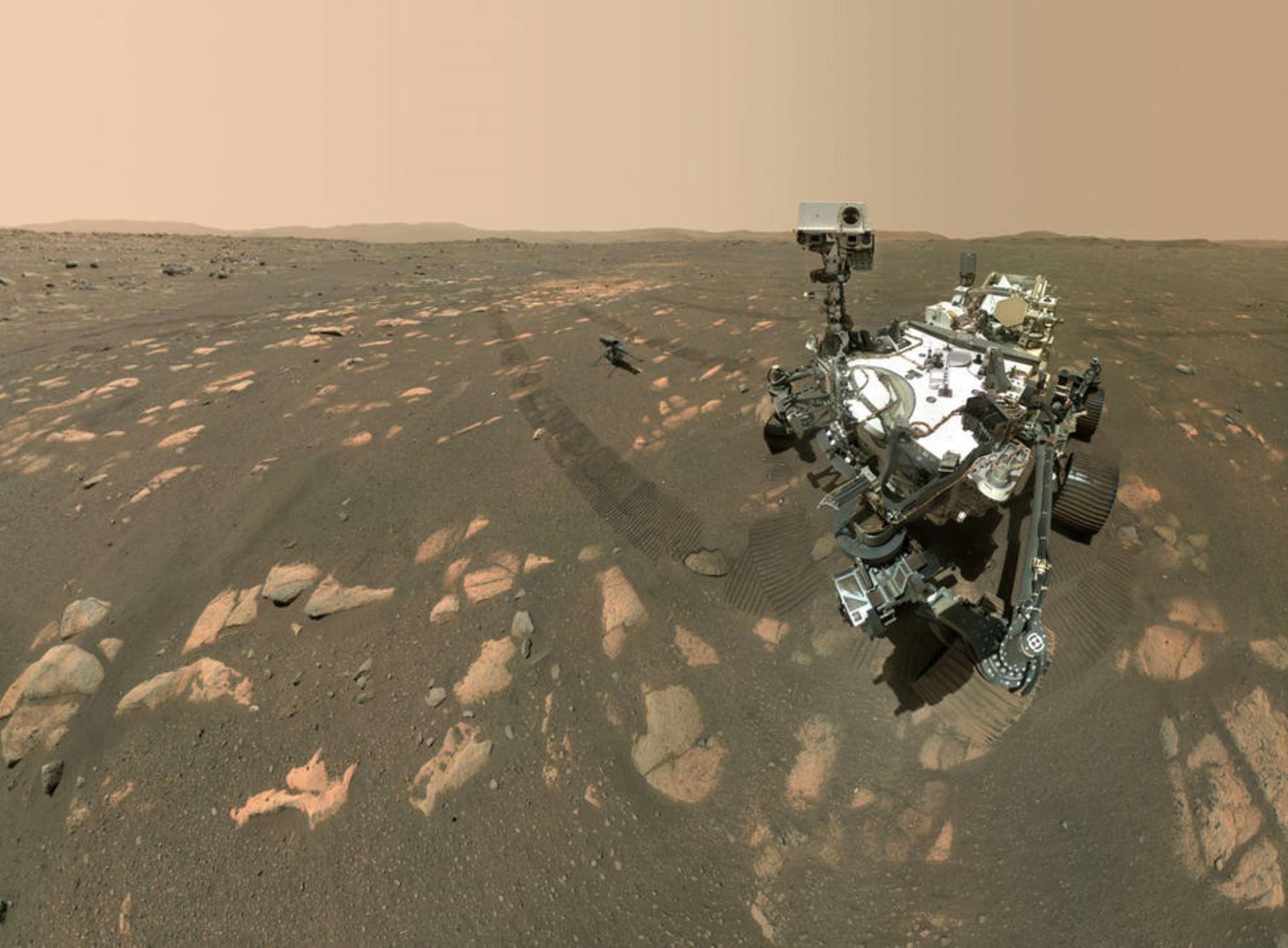 El selfie de Perseverance con Ingenuity se compone de 62 imágenes individuales unidas en la Tierra; fueron obtenidas secuencialmente mientras el rover miraba al helicóptero, y luego a la cámara WATSON. Créditos: NASA/JPL-Caltech/MSSS.