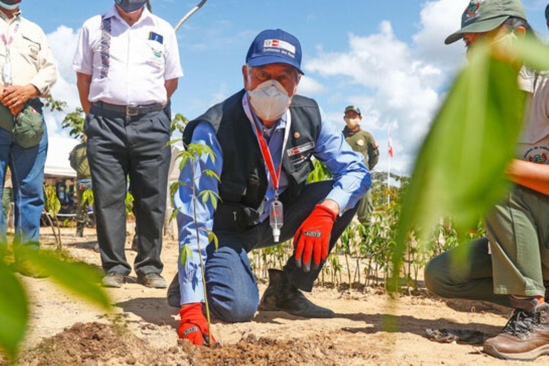 Madre de Dios: Gobierno y sociedad civil logran recuperar áreas dañadas por minería ilegal