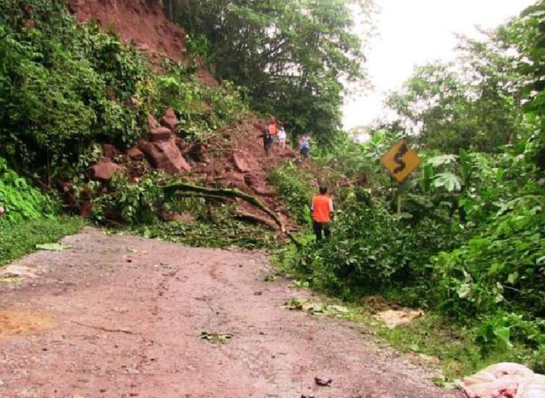 Lluvias y vientos causan derrumbes en la carretera Tarapoto-Yurimaguas, en la región San Martín. ANDINA/Difusión