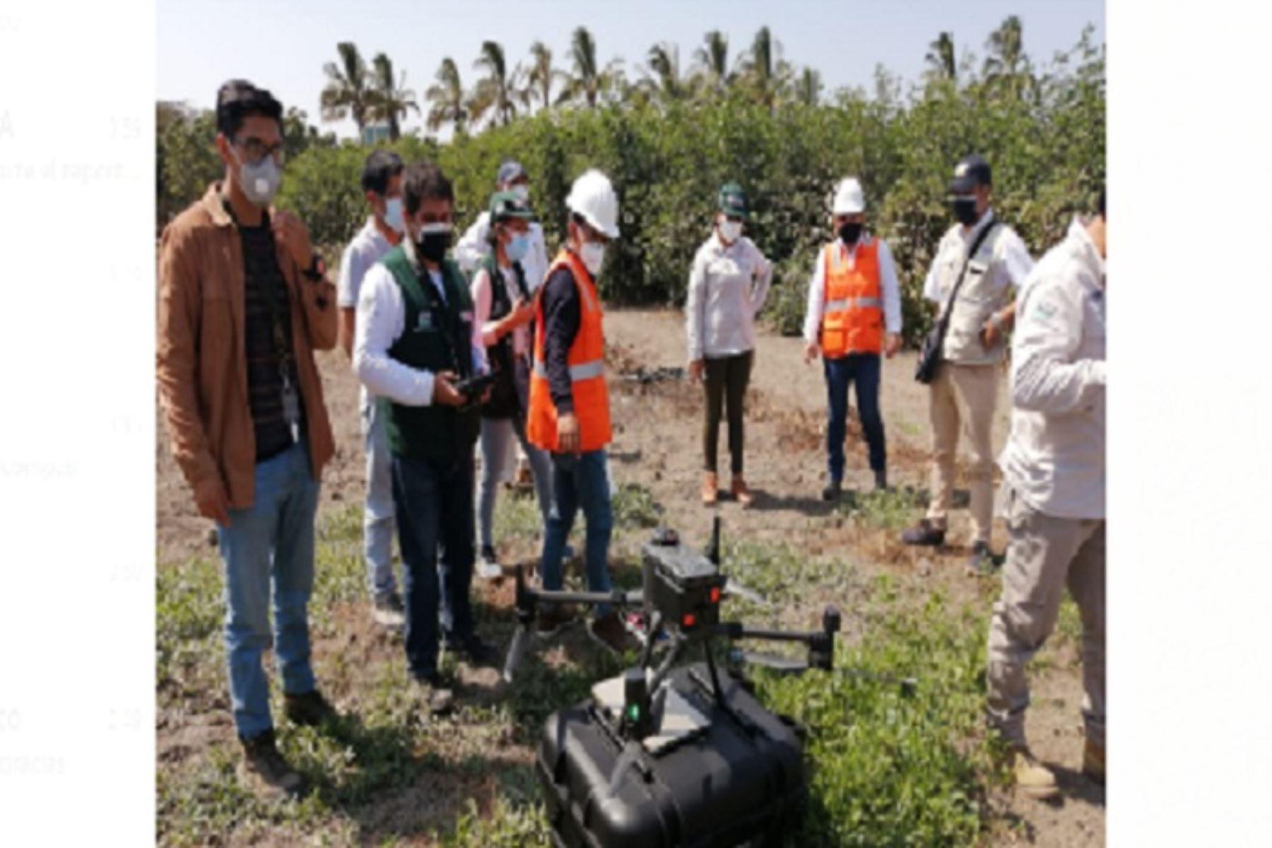 Midagri monitoreará cultivos de cuatro regiones con drones de teledetección