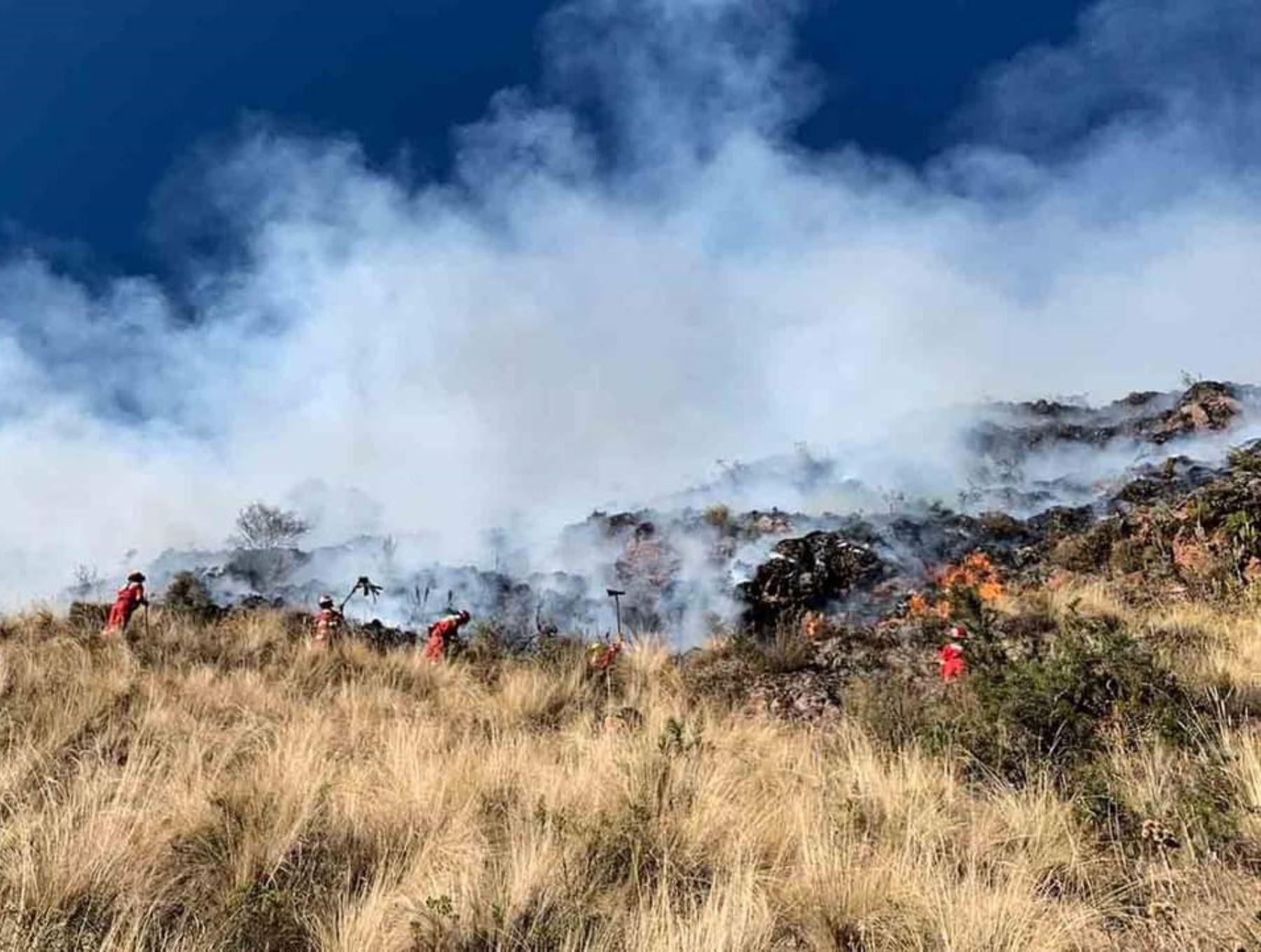 Cusco: controlan incendio forestal que arrasó con más de 10 hectáreas de pastizales