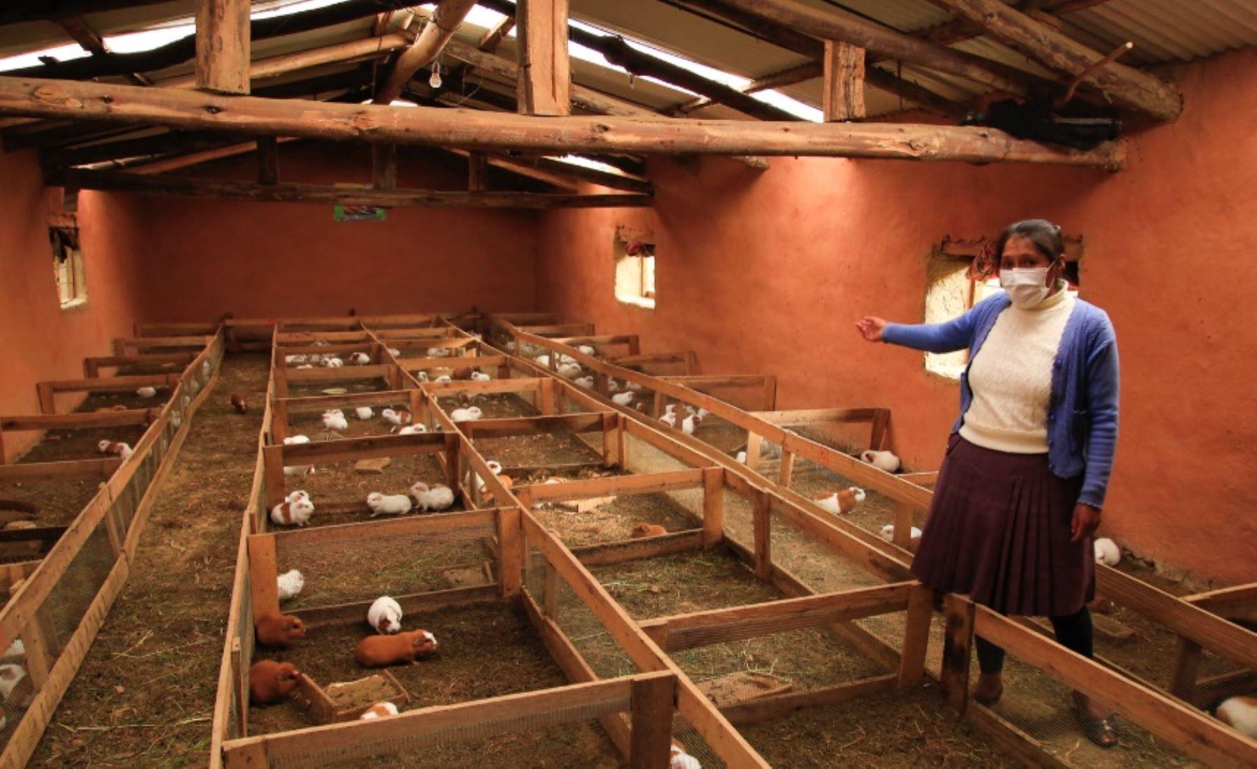Cusco: madres de familia se empoderan y emprenden sus negocios con apoyo del Tambo Churo