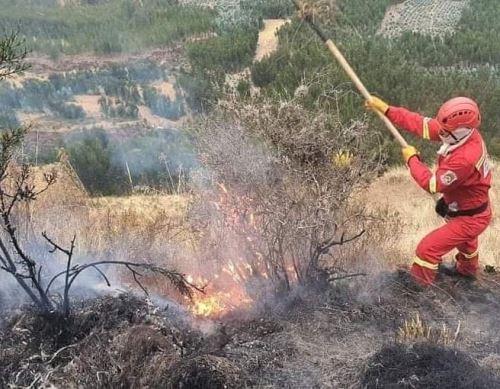 Cusco registró más de 190 incendios forestales en lo que va del año que provocaron la muerte de dos personas y arrasaron con más de 9,000 hectáreas de pastizales, arboledas y campos de cultivo, informó la Oficina de Gestión de Riesgos del Gobierno Regional de Cusco. Foto: ANDINA/difusión.