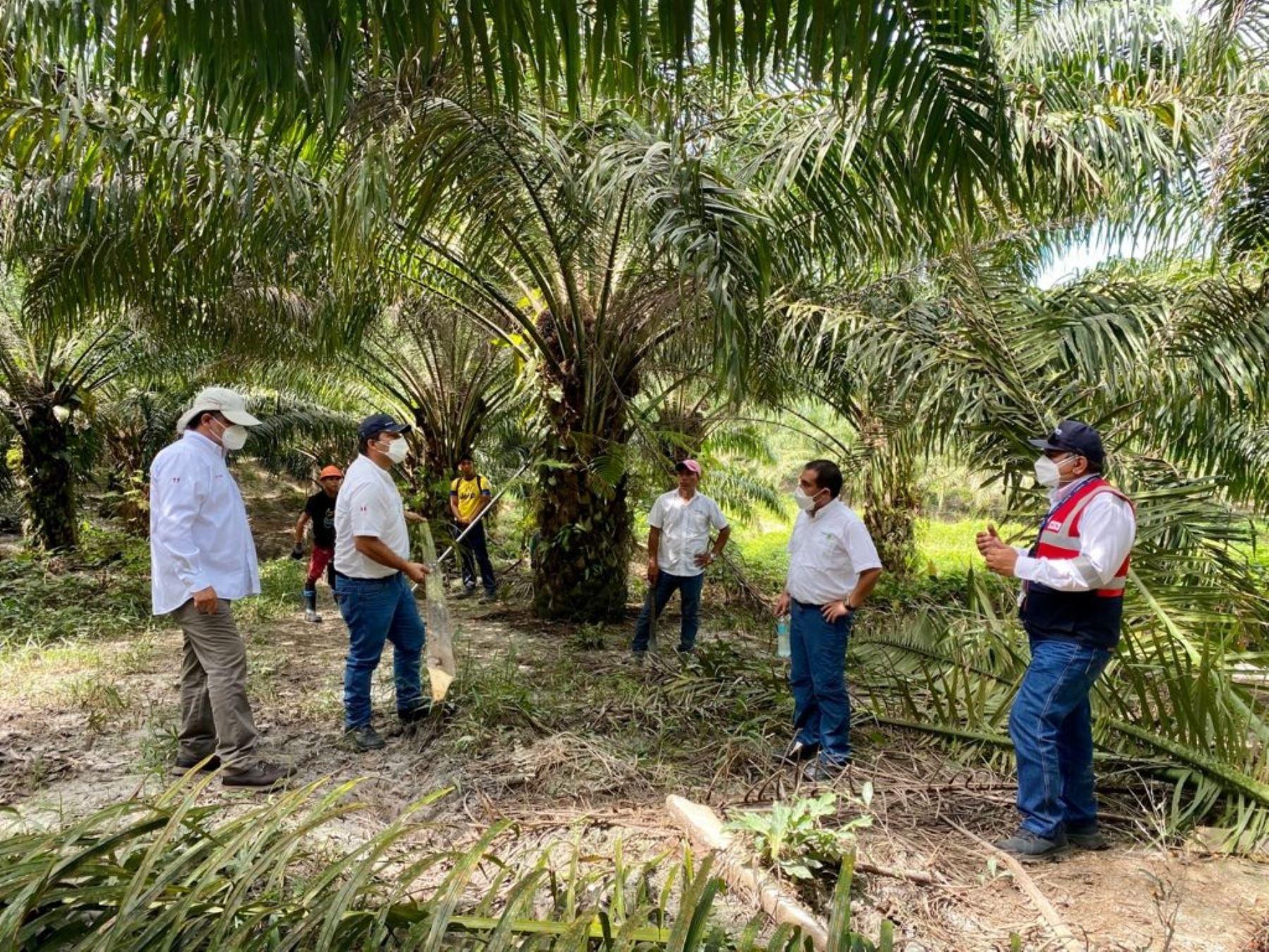 San Martín; 8,000 trabajadores salvan de sufrir riesgos laborales graves
