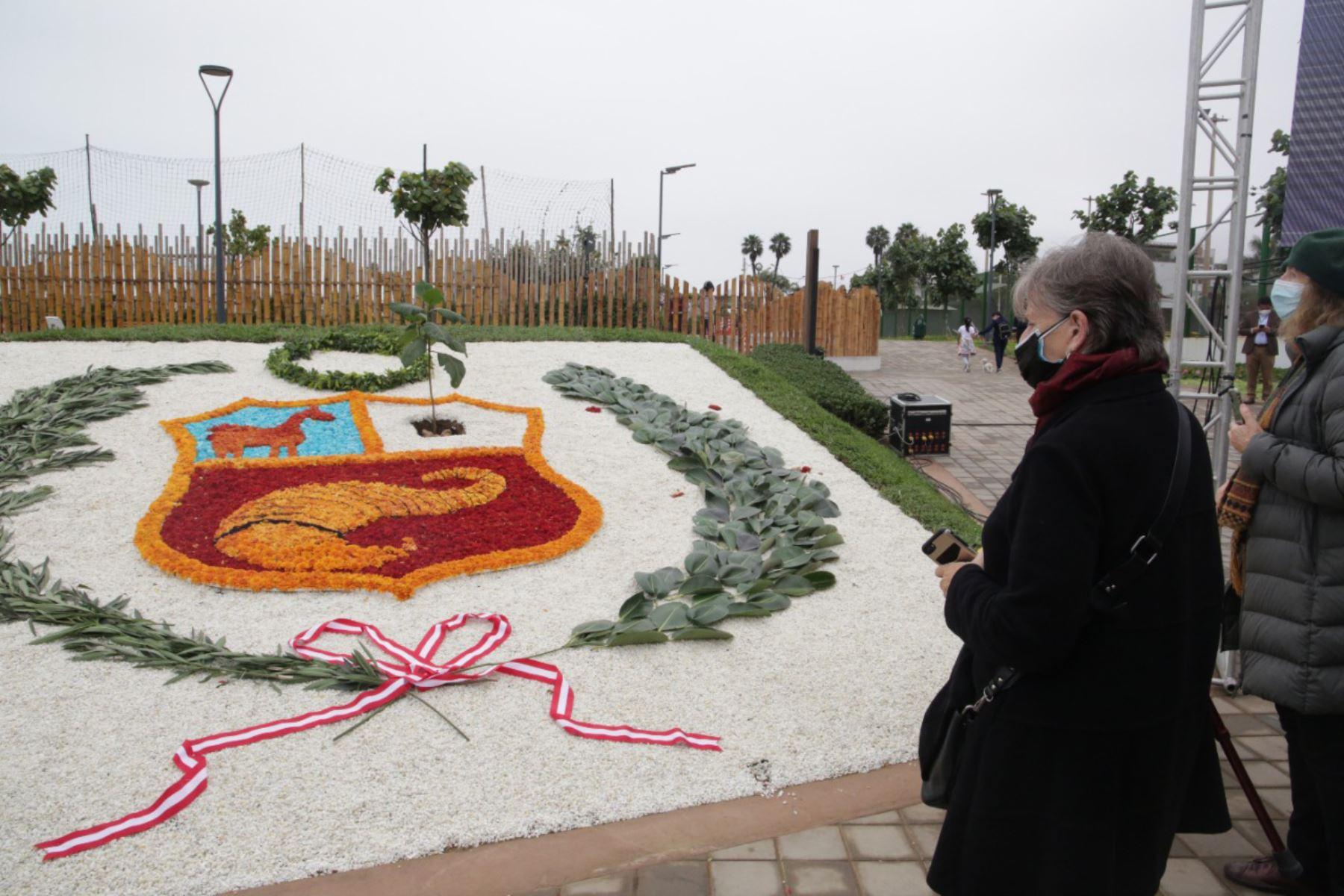 Bicentenario: el emblemático árbol de la Quina crece en los parques de San Isidro