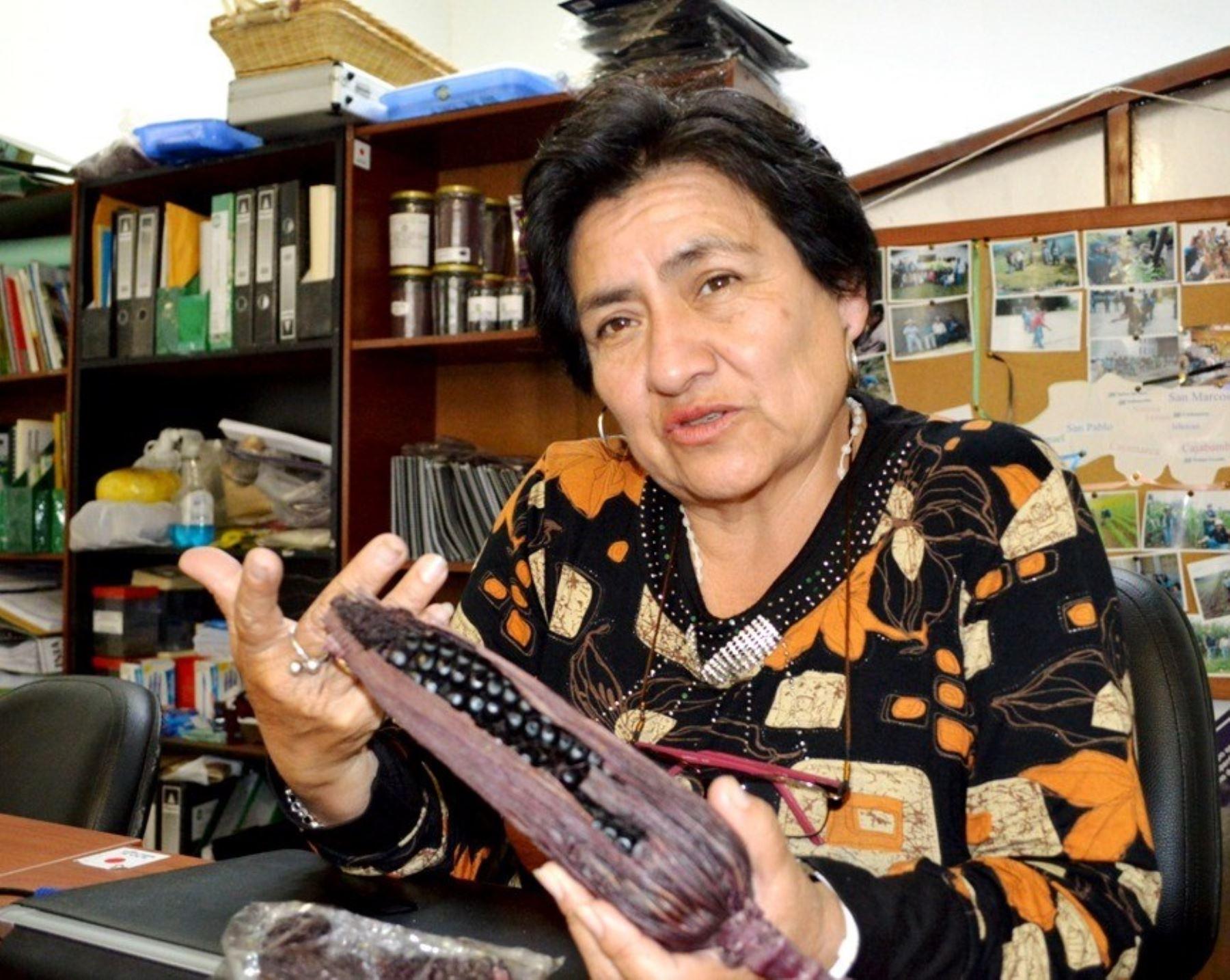 Cajamarca reconoce a la investigadora del supermaíz morado como Personaje del Bicentenario
