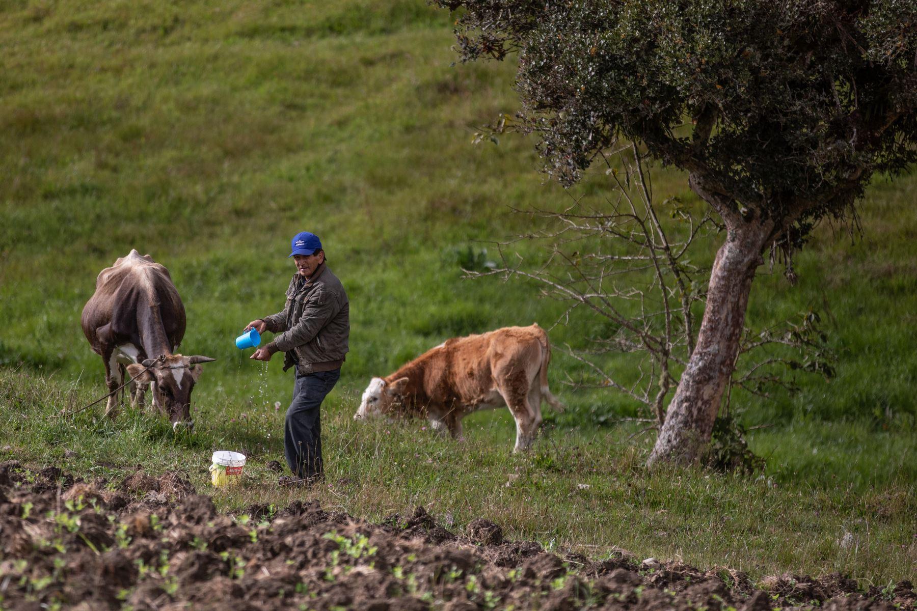 Su población se dedica mayormente a la actividad agrícola y tiene necesidades básicas que esperan ser satisfechas. Foto: ANDINA/Andrés Valle