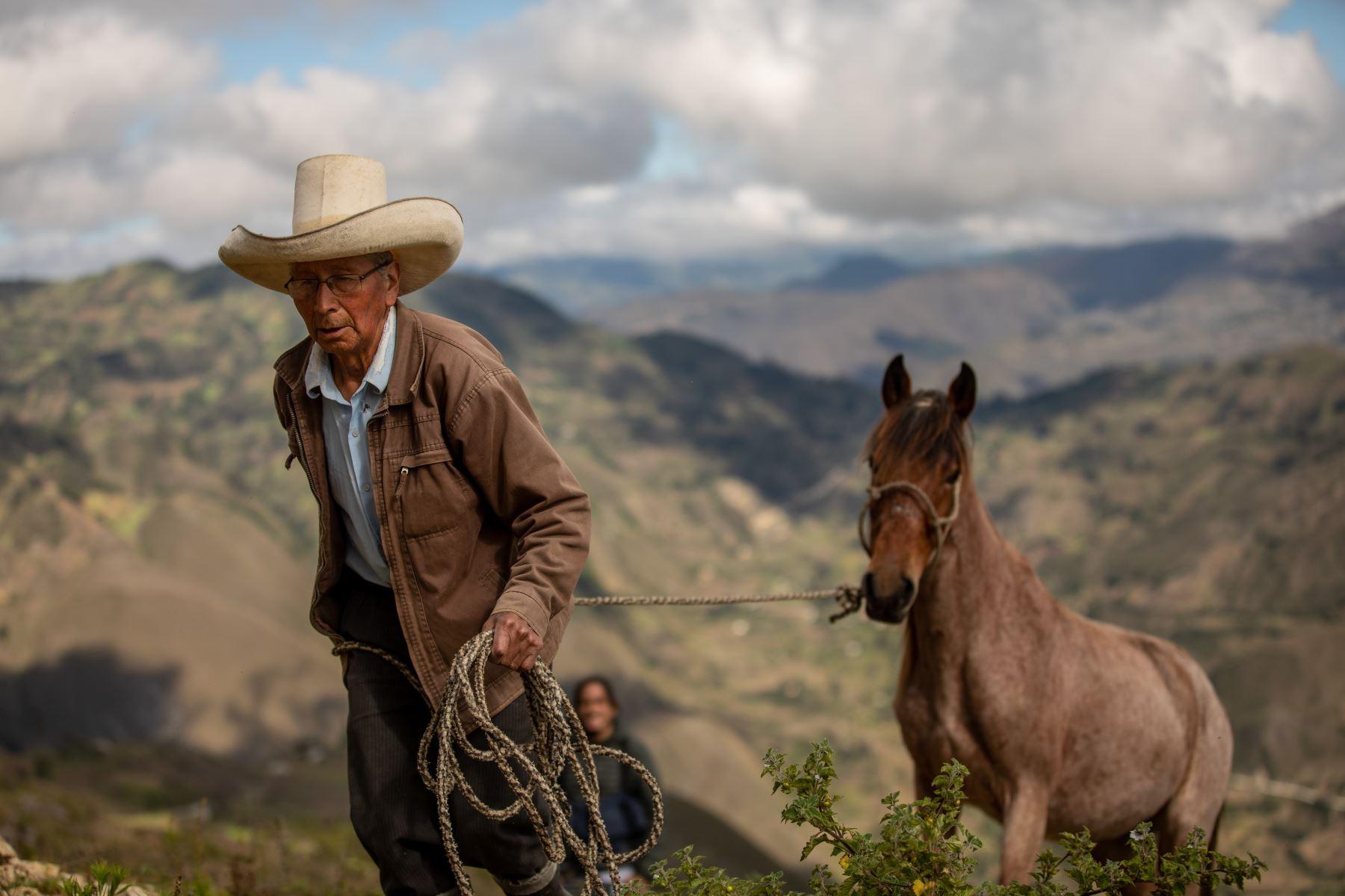 Ireño Castillo Nuñez, padre de Pedro Castillo, realiza su faena diaria. Foto: ANDINA/Andrés Valle