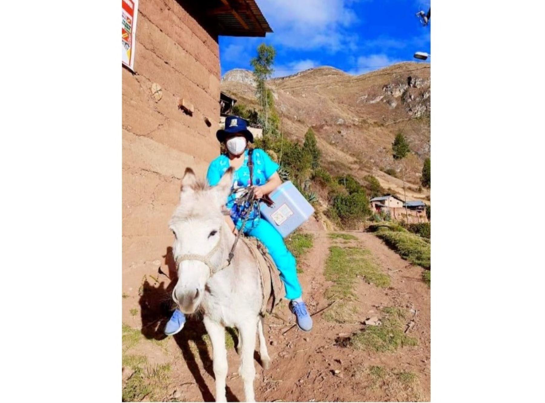 Áncash priorizará vacunación de mayores de 18 años de comunidades campesinas de la zona andina de la región.