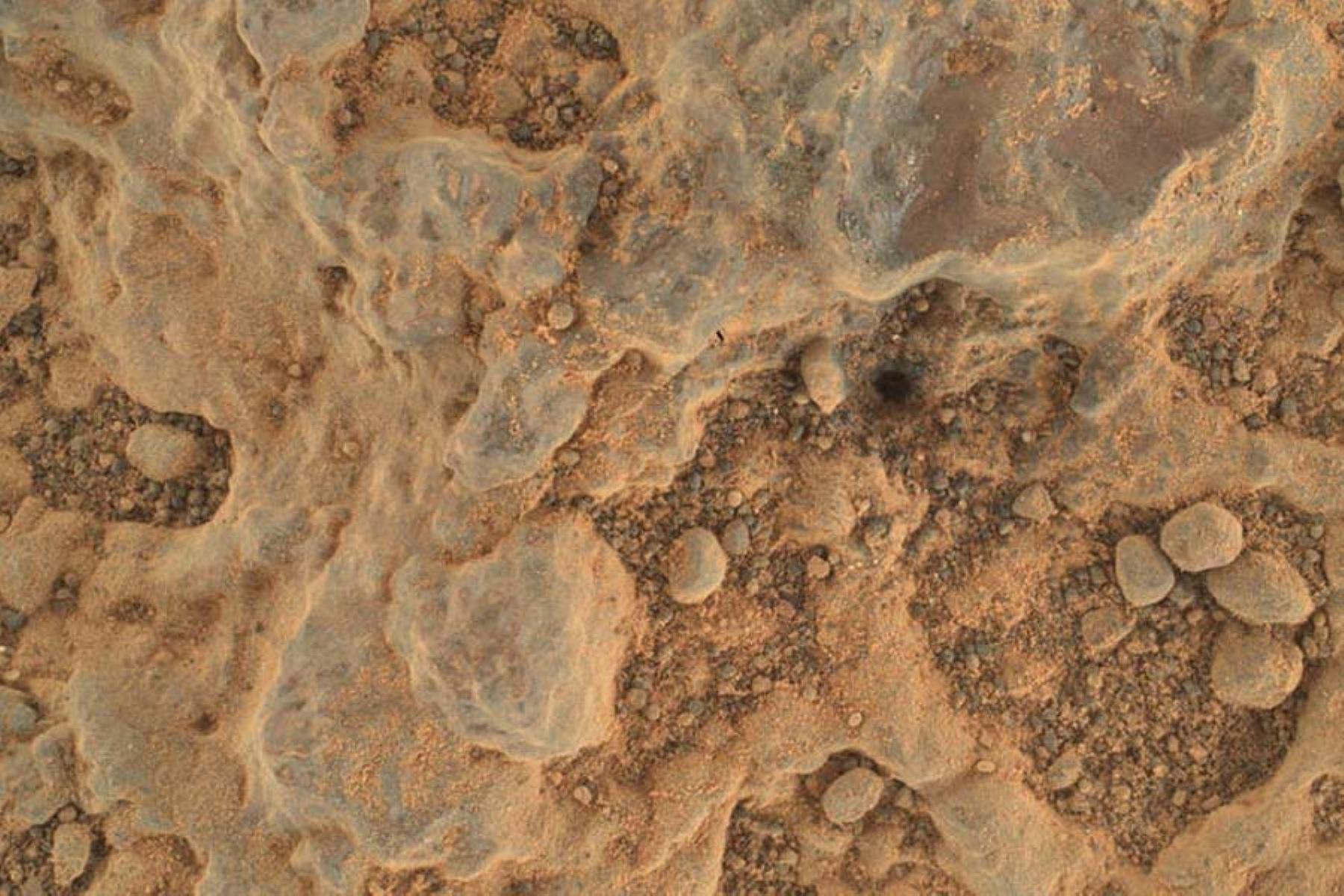 """El rover Perseverance Mars de la NASA tomó este primer plano de un objetivo rocoso apodado """"Foux"""" usando su cámara WATSON, ubicada en el extremo del brazo robótico del rover. La imagen fue tomada el 11 de julio de 2021, el día de la misión o sol número 139 marciano. Foto: NASA/JPL-Caltech/MSSS."""