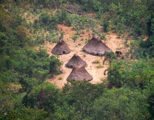 Perú crea reserva indígena Kakataibo Norte y Sur para proteger a pueblo en situación de aislamiento.