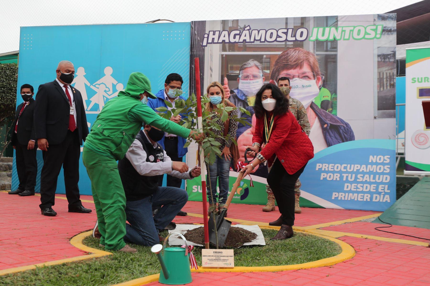 La presidenta del Consejo de Ministros, Violeta Bermúdez junto a la presidenta ejecutiva de EsSalud y el alcalde de Surquillo, participan del Sembrado de 200 árboles por su 72 aniversario. Foto: PCM