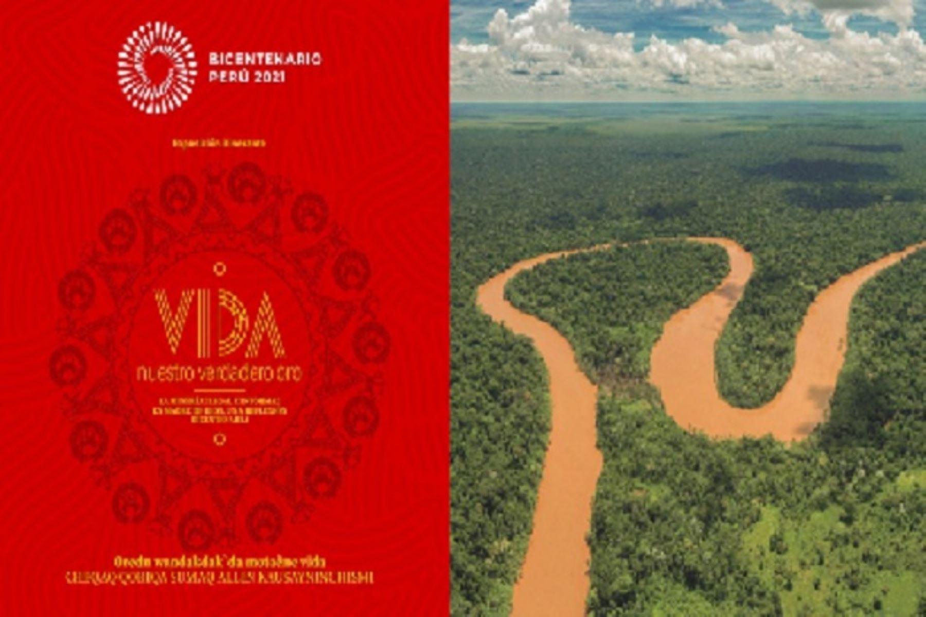 La minería ilegal e informal en Madre de Dios no solo deteriora el territorio y los recursos naturales, también afecta directamente la salud y el desarrollo de las comunidades amazónicas, ocasiona violencia e injustica ambiental.