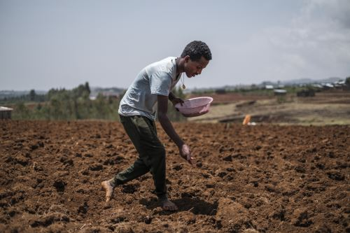 Los autores reclaman acciones rápidas y radicales en varios sectores, como la eliminación de energías fósiles, la restauración de los ecosistemas, los regímenes alimentarios vegetarianos y la búsqueda de un nuevo modelo de crecimiento. Foto: AFP
