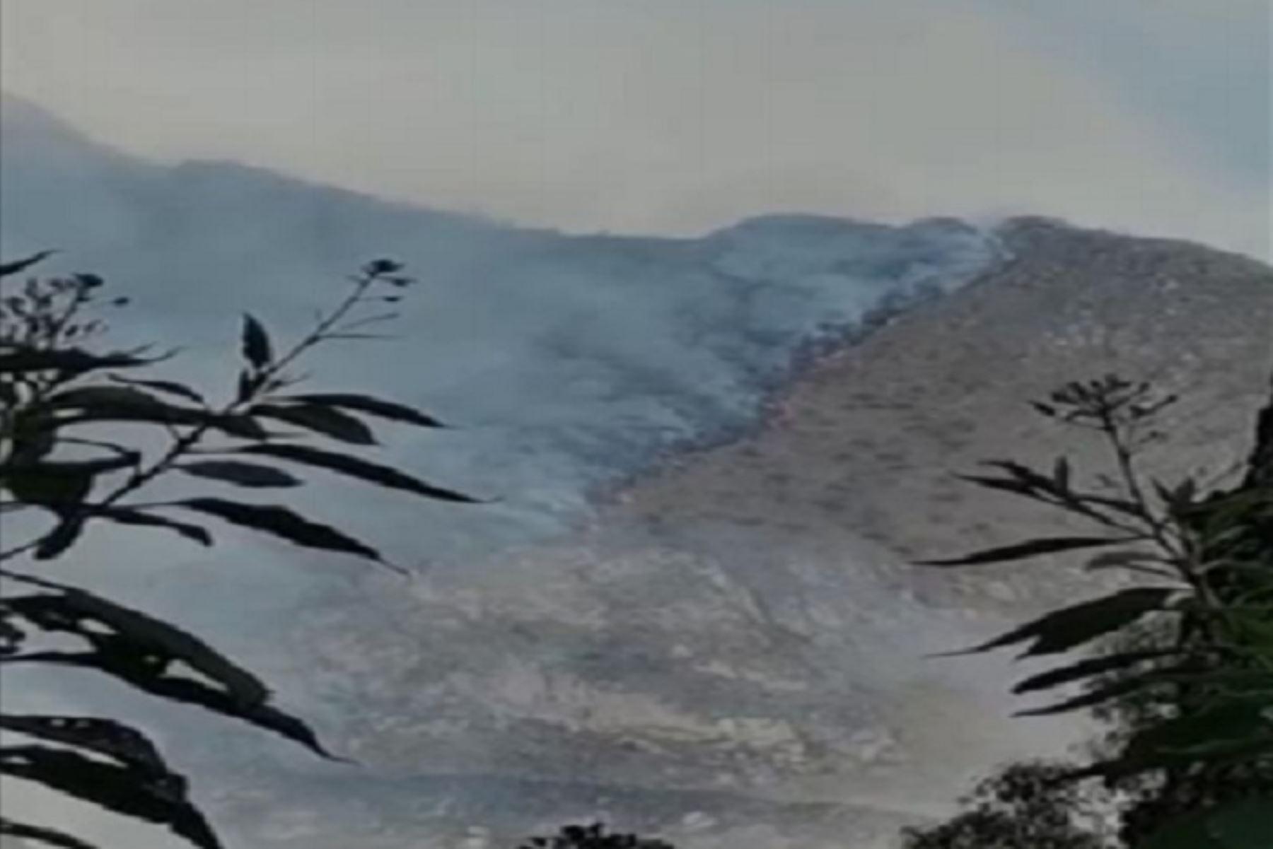 Incendio forestal en distrito de Machu Picchu destruye 18 hectáreas de cobertura natural