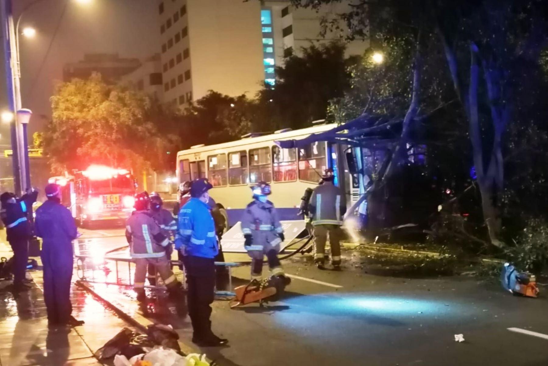 ATU: dan de alta a las dos mujeres heridas por el choque de bus contra un árbol. Foto: ANDINA/Difusión.