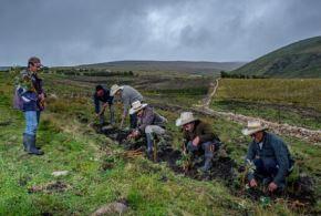 Las Soluciones basadas en la Naturaleza (SbN) son una oportunidad para aprovechar el vasto patrimonio natural del país y atender, al mismo tiempo, múltiples desafíos sociales de manera equitativa, costo-efectiva y sostenible. Foto: Ministerio del Ambiente