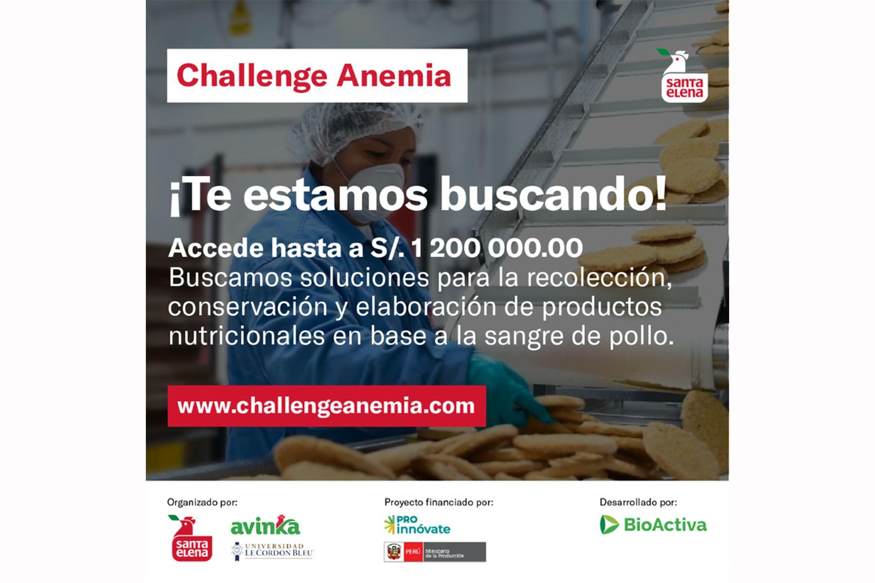 Postula al Challenge Anemia: innovación de productos a base de sangre de pollo.
