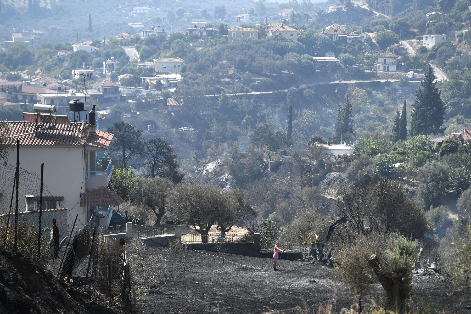 Un residente local limpia el trabajo en un jardín quemado en Ziria, al este de Patras. Las autoridades griegas lidiando con un gran incendio forestal. Foto: AFP