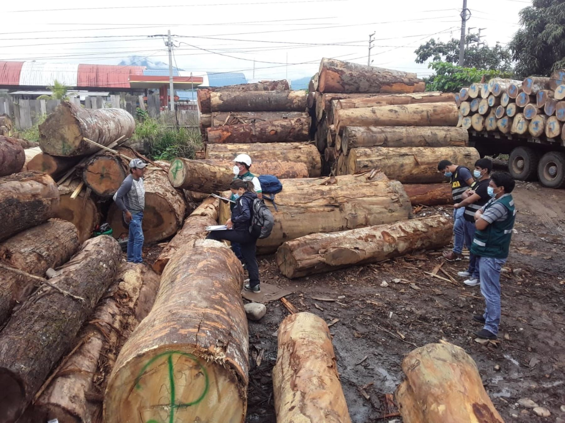 Autoridades incautaron en la provincia de Satipo, región Junín, madera de origen ilegal valorizada en más de S/ 39,000, informó el Serfor. ANDINA/Difusión