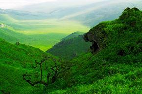 La Reserva Nacional de Lachay es uno de los destinos de naturaleza más importantes ubicado cerca de la ciudad de Lima y es el lugar preferido por las personas que quieren disfrutar del contacto con la naturaleza. Foto: Kerly Castillo/Sernanp