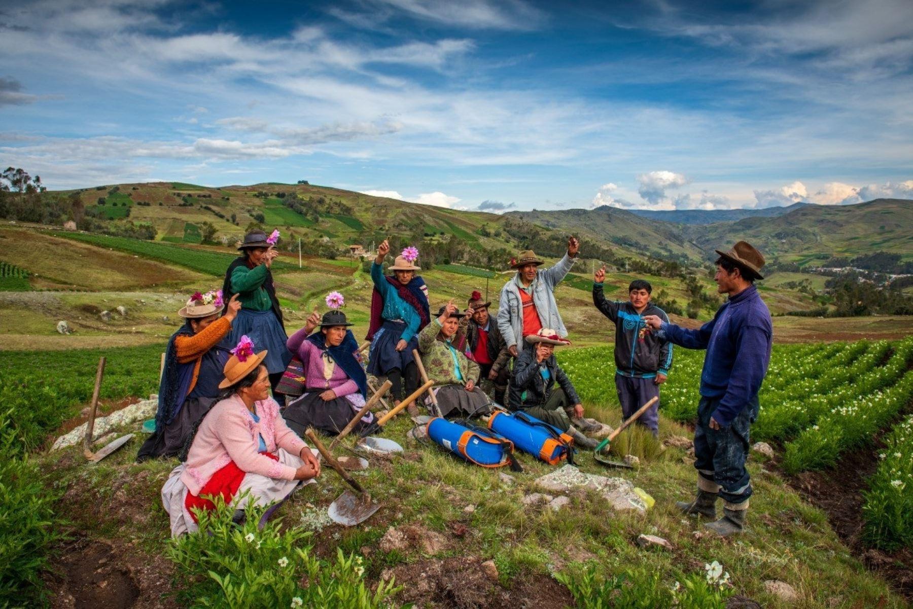 Midagri fortalece FAE-Agro ampliando cobertura para dos campañas agrícolas