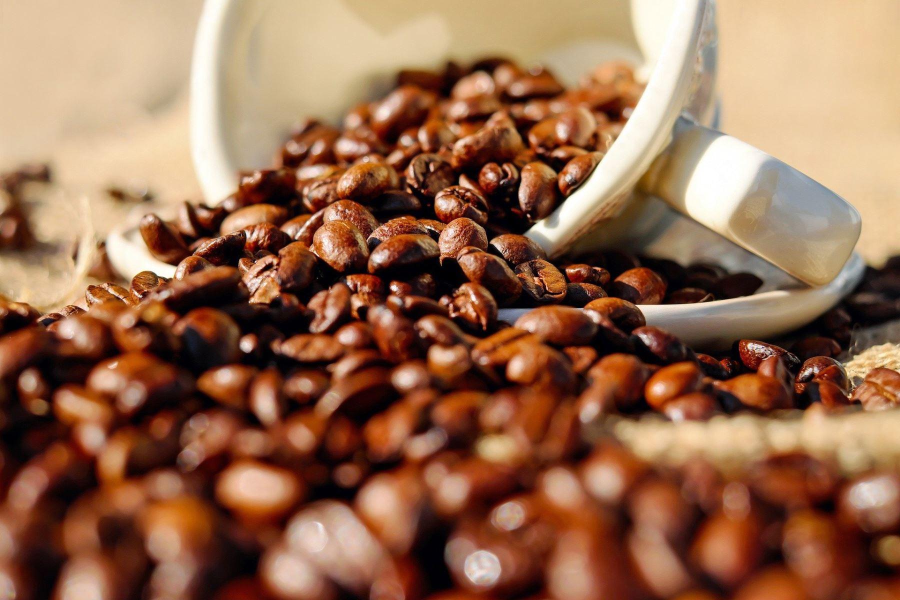 Café. Foto: ANDINA/Difusión.
