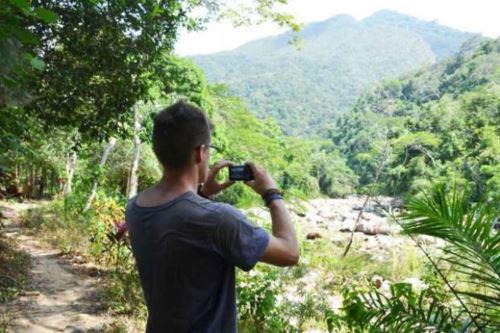 Región San Martín instala grupo de trabajo hará monitoreo de proyectos que buscan reducir la deforestación. ANDINA/Archivo