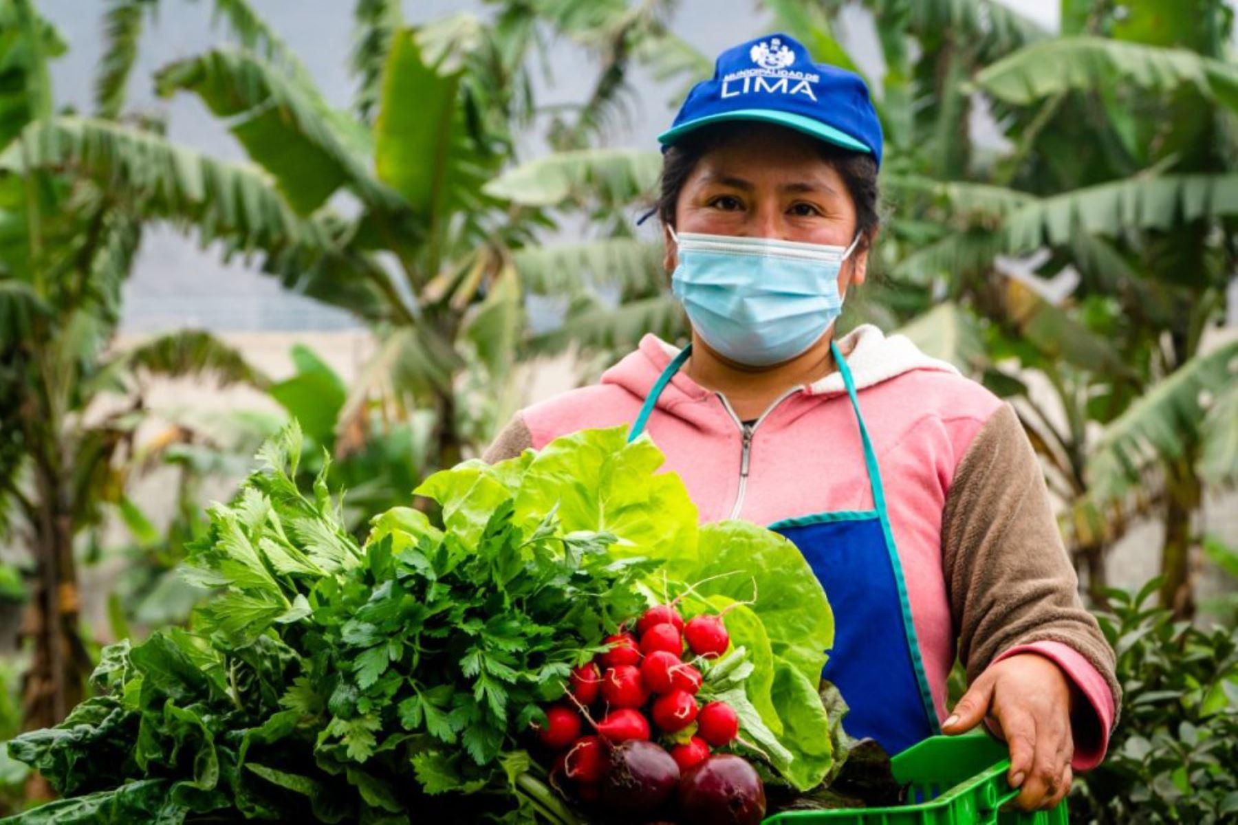 El jueves 16 el Mercado Móvil estará en la Alameda de la Integración (altura de la puerta 3 del Parque de la Reserva, Santa Beatriz), de 8 a.m. a 1 p.m. Foto: ANDINA/ Municipalidad de Lima.