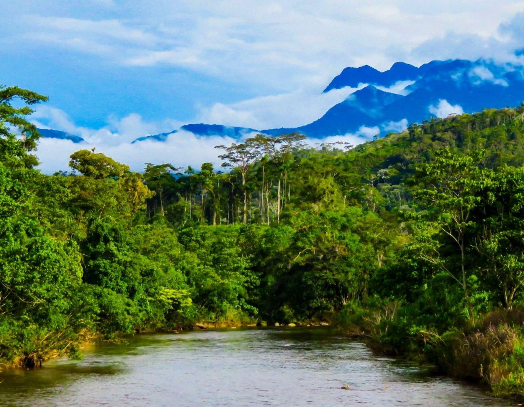 Sernanp impulsa el turismo rural comunitario en el Bosque de Protección Alto Mayo, ubicado en la región San Martín, con la inauguración de la Casa del Turista de Nueva Zelandia.
