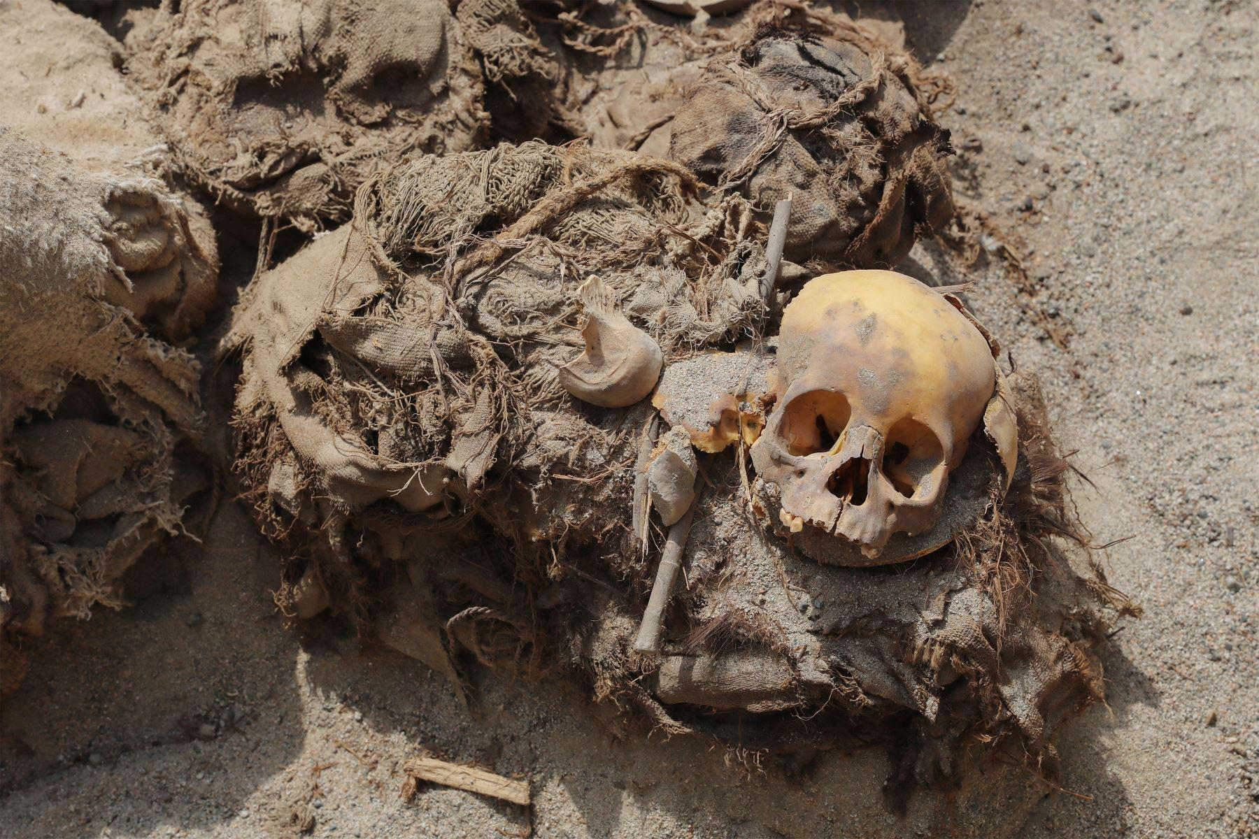 Aun poco más de media hora de Lima se encuentra el balneario  de Chilca. En una de sus polvorientas calles se encontró, durante el tendido de la red de gas, restos arqueológicos. Foto: ANDINA/ Andrés Valle