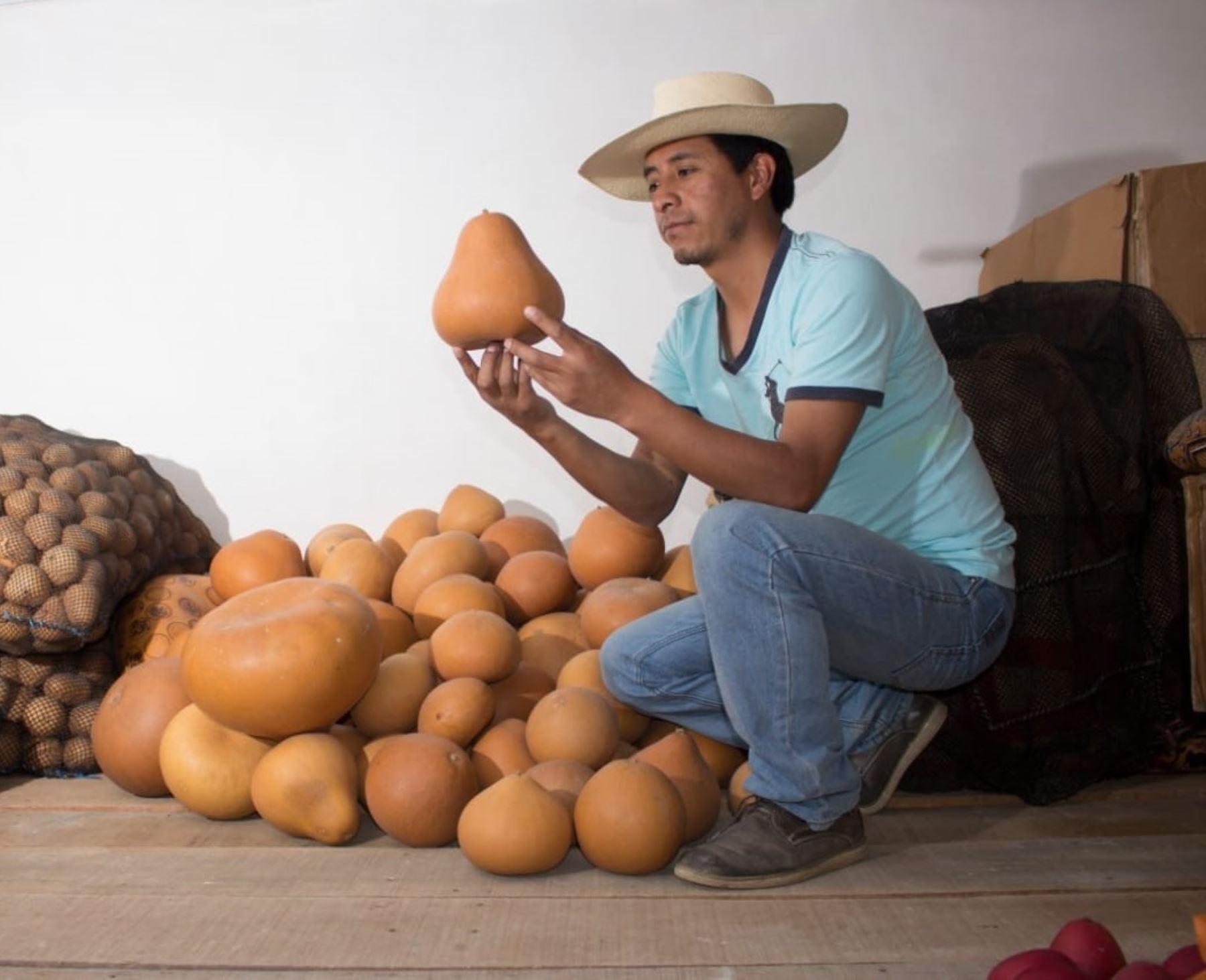 Conoce a Luis Felipe Manrique, el maestro huancavelicano que ganó el concurso Artesano creativo del Bicentenario que organizaron Mincetur y la embajada de Estados Unidos en Perú. ANDINA/Difusión