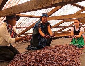 La Municipalidad de Oxapampa lanzó una certificación que garantiza la calidad del cacao, café y otros que se producen en la Reserva de Biósfera Oxapampa Asháninka Yánesha.