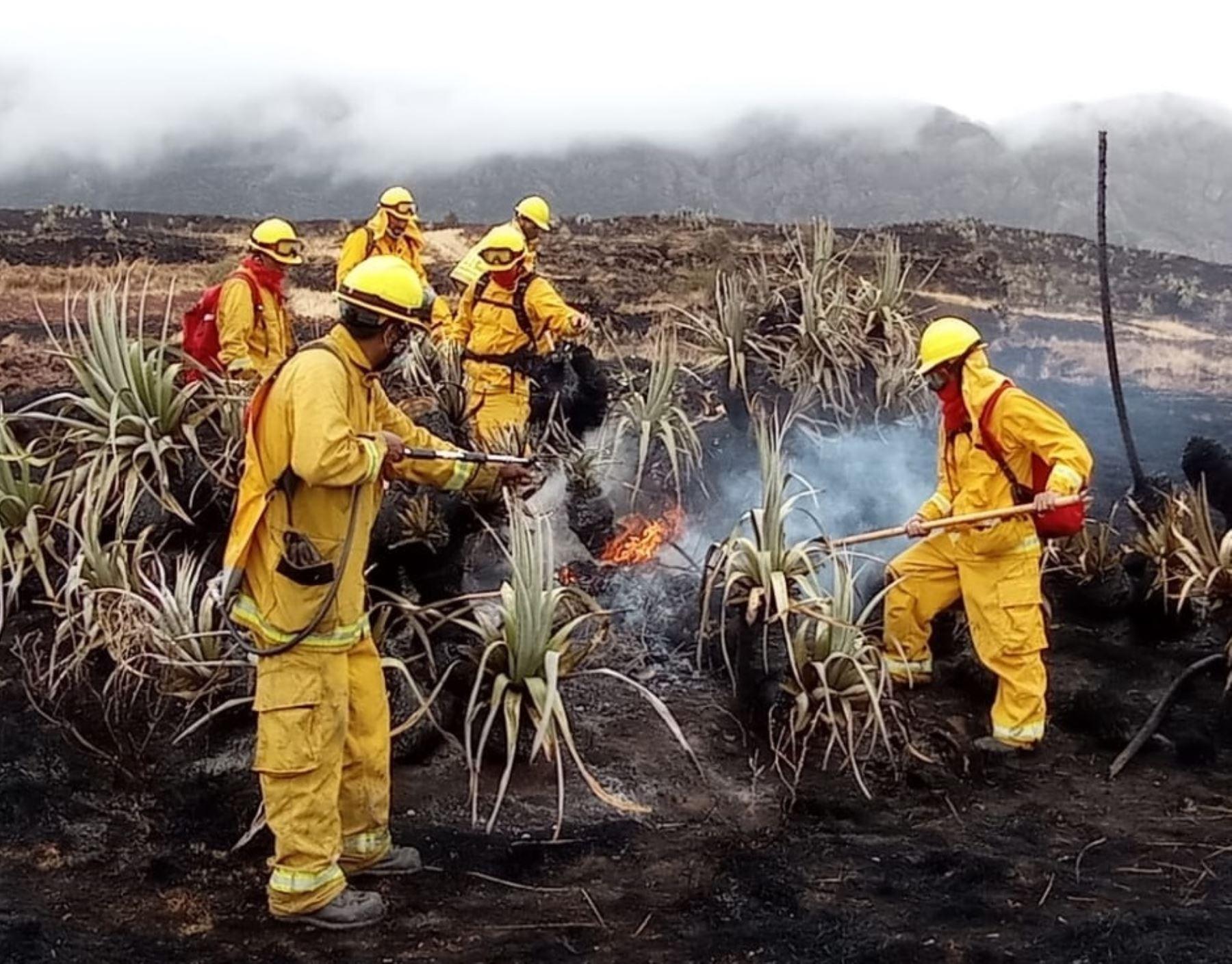 Guardaparques bomberos del Sernanp se movilizan para sofocar incendio forestal que se registra desde el domingo 19 en el distrito de San Jerónimo, en Cusco. ANDINA/Difusión