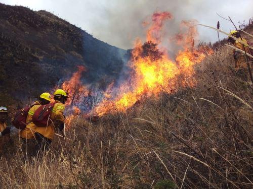 Más de 850 hectáreas de cobertura natural devastó el incendio forestal que afectó a tres distritos ubicados en la provincia de Cusco, cerca de la Ciudad Imperial. ANDINA/Difusión